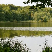 Bordesholmer See